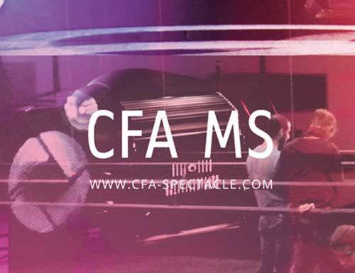 CFA des Métiers du Spectacle
